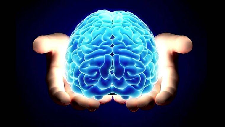 Banco de Cerebros